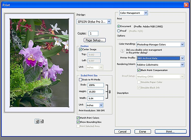 ColourProfiles com suppliers of custom printer profiles at